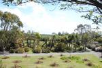 Logan Botanical garden, Scotland