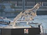 Glass dinosaur, Paris, Paris