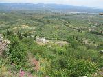 The plain of Sparta, Greece