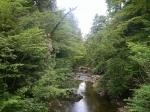 Water in Ardkinglas Woodland Garden, Scotland