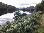 Loch east of Loch Ness, Scotland