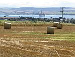 Hay bales at the cromarty Firth, Scotland