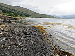 Along Loch Scridain, Scotland
