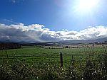 Landscape at Longfold, Scotland