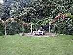 In the garden of Ballindalloch castle, Scotland