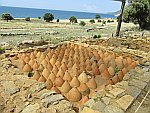 Amphoras in the ground, Zoni