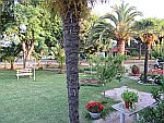 The garden at our apartment in Sykia, Sithonia