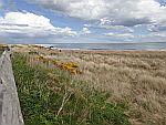 The beach of Dornoch, Scotland