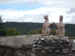 Griffins at a country house, west of Ardgay, Scotland