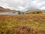Landscape at Loch Droma, Scotland