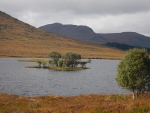Islet in Loch Droma, Scotland