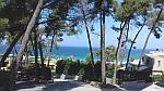 The coast at Sani on Kassandra, Greece