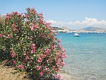 View of Koulouri (Salamis city), Greece