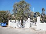 A tree grows through a wall, Salamina, Greece